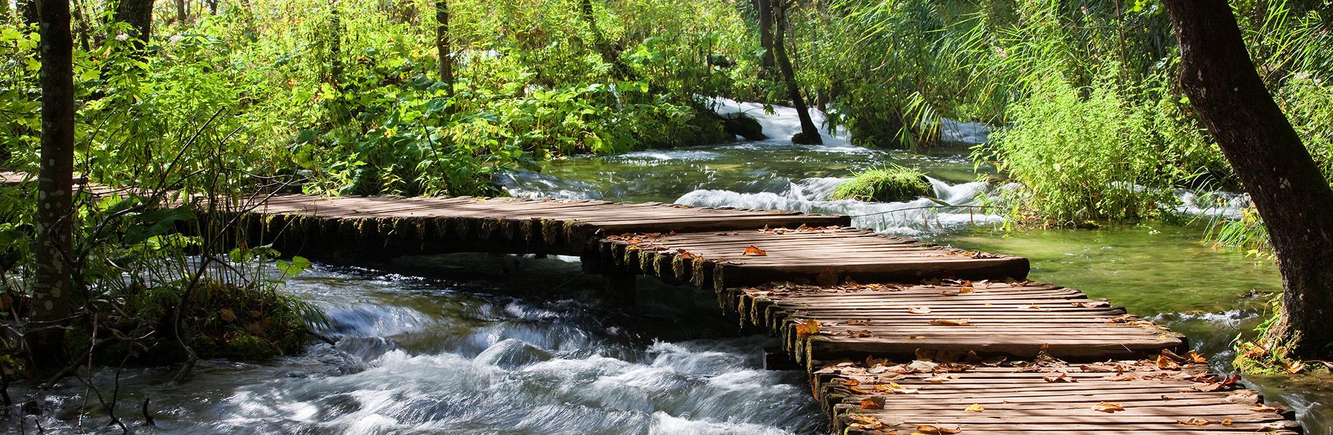 Brücke Bild